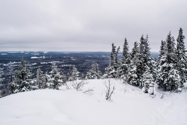 Vue du sommet du Mont Sugar Loaf