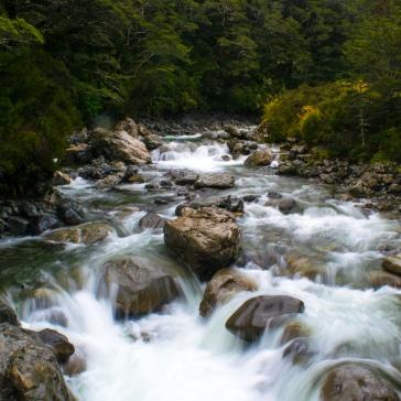 La rivière Beavey à Arthur's Pass